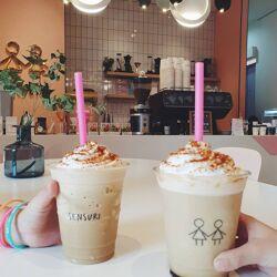 Sensuri Coffee Gallery, Sei Besitang